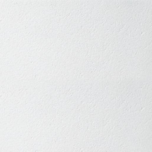 Bioguard Plain Board Ceiling Tile 1200 x 600 x 15mm Box of 10