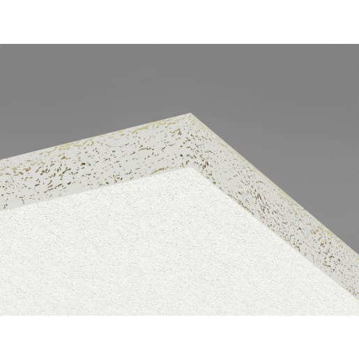 Ecophon Hygiene Performance AT24 Ceiling Tile 600x600x20mm Box of 28